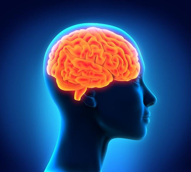 Dolayısıyla beyninin sağlıklı tutmak için su içmeniz gerekir. Kilo kaybetmek için tablet kullananlar ya da çay içenler bilmelilerdir ki bu sıvı kaybına da neden olur beynin performansını etkiler.