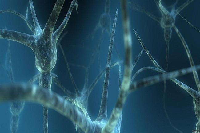 8. Beyin vücuttan daha sonra uyanır...İnsan uyandığında beyni tam uyanmamış olur. Amiyane tabirle sabahları kafanız pek basmaz. Yani sabah kalktığınızda beyin egzersizleri yapmak çok yararlı olur. Yani televizyonu açmak yerine bir şeyler okumalısınız.