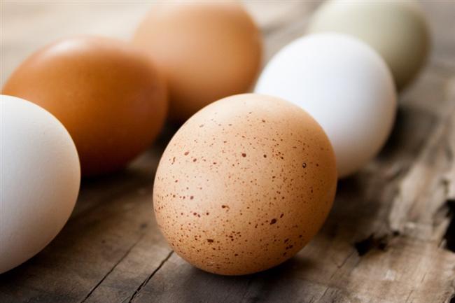 Yumurta  4 santigrat derecenin altında muhafaza ediliyor olması çok önemli. Aksi halde yumurtada mikroorganizmaların üreme olasılığı artıyor. Kabuğundaki salmonella varlığı, yumurtaya geçebiliyor. Görüşünün kirli ve üzerinde küçük de olsa çatlak olmamasına da dikkat edilmeli.