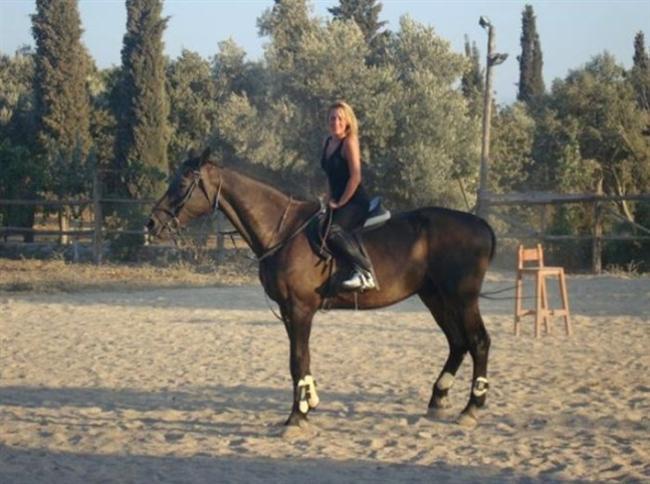 At binmeyi öğrenebilirsiniz.