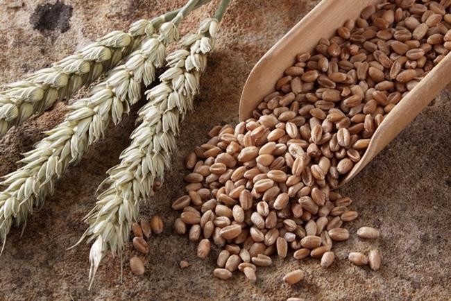 Tam tahıllar: Kan şekerini dengeliyor. Tam buğday, çavdar gibi yüksek posalı ve düşük glisemik indeksli ekmek tüketin.