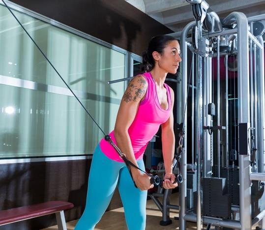 • Dikdörtgen Tipi Vücut ve Serbest Spor  Dengeli üst ve alt bedenin yanı sıra, uzun kol ve bacaklarla belli belirsiz bir bel kavisine sahip olan bu vücut tipindeki kişiler genellikle zayıftırlar. Diledikleri kardiyo egzersizi onlar için uygundur. Dikdörtgen tipi vücuda sahip olanlar özellikle omuz ve kalça egzersizlerine yönelerek onları kuvvetlendirerek, şekillendirebilir ve sonuçta da bel kıvrımının daha çok ortaya çıkmasını sağlanabilir. Böylelikle çok daha şekilli bir vücuda sahip olabilirler.
