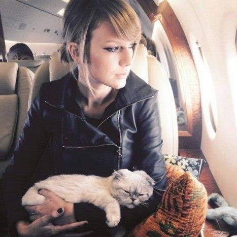 Taylor Swift ve kedisi Olivia.