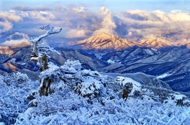 2018 Kış Olimpiyatları'na ev sahipliği yapacak: Pyeongchang  2018 Kış Olimpiyatları'na da ev sahipliği yapacak olan bu yerde birçok kayak merkezi bulunmaktadır. Kayak yapmayı sevenlere önerimiz 2018 yılının sıkışıklığına yakalanmadan önce buraya gelmeleri ve buranın sessizliğinin ve sakinliğinin tadını çıkarmaları yönünde. Aynı zamanda burada birçok Japon, Kore ve Çin restorantlarını da kolaylıkla bulabilirsiniz.