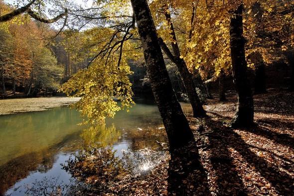Yedigöller:   Türkiye'nin en çok tercih edilen bir diğer sonbahar rotası da Yedigöller. Yedigöller'e Yedigöller denmesinin sebebi havza kayan kütlelerin vadilerin önlerini kapatması sonucu oluşan kuzeyden güneye 1500 m. mesafede sıralanmış 7 gölden oluşmasıdır.