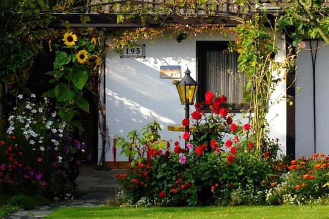 Bahçeye serpiştirdiğiniz az miktardaki kahve tanesi, sümüklü böcekleri oradan uzak tutmaya yetecektir.