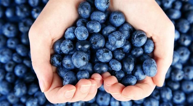 Yaban mersini  İçerdiği polifenol sayesinde beynin yaşlanmasını engellemeye destek oluyor. Günlük 2 kaşık tüketilebilir. Her gün 5–6 porsiyon sebze ve meyve tüketmeye özen göstermek. En önemlisi sağlıklı beslenmek ve sosyal hayattan kopmamaktır.