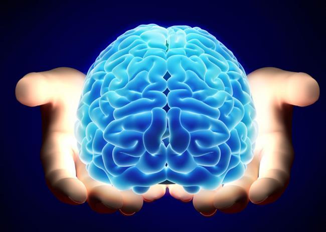 Beynizimin Yüzde 10'unu Kullanırız   Beyin taramalarında da görüleceği gibi, bu bilgi doğru değildir. Bu inanışın geçerliliğini sürdürmesinin nedeni belki de buna inanmanın hoşumuza gitmesidir.