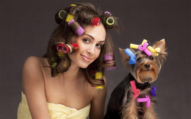 1. Bigudi İle Dalgalı Saçlar  Isı kullanmadan dalgalı saçlar elde etmek söz konusu olduğunda ilk akla gelen yöntem bigudileri kullanmak. Birçok seçenek mevcut fakat sosis^ve   sünger bigudiler evde kullanım için en uygun bigudi çeşitleri. Hem çok doğal bukleler ortaya çıkarıyorlar hem de yumuşak yapıları sayesinde geceyi bigudilerle geçirmek kâbus olmuyor.