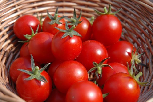 Domates  Buzdolabına koyulmaması gereken besinlerdendir. Buzdolabı sıcaklığında domates yapısı yumuşar, iç yapısı bozulur ve tadı değişir.