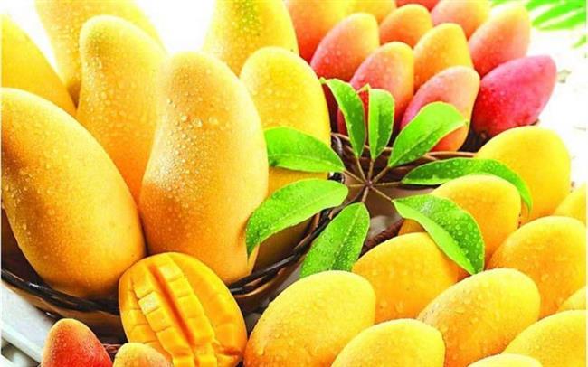 Mango Tüketin:  Bir ilginç tavsiye ve teknik de mango yemek ile ilgili oluyor. Linalool isimli bir bileşen içeren bu tropik meyve, kendisini tüketenlere sinirleri yatıştırıcı ve rahatlatıcı bir etki gösteriyor. Biyolojik anlamda da içindeki maddeler ile vücuda olumlu etkilerde bulunan bu meyve, hem sağlık açısından hem de stres açısından son derece faydalı bulunuyor. Mango yemeyi deneyin ve kendinizi plajlarda dinleniyor hissedin.