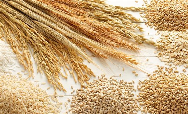 Tahıllar  Özeliikle esmer tahıllar tüketmelisiniz.