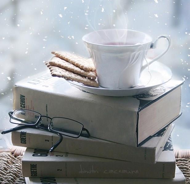 Kar yağışına karşı perdelerinizi ardına kadar açıp karı izlemek güzeldir fakat daha güzeli ise kitap okumaktır.Çayın eşlik ettiği o kitaplar bizlere hiç düşlemediğimiz hayal dünyalarına daldırır.