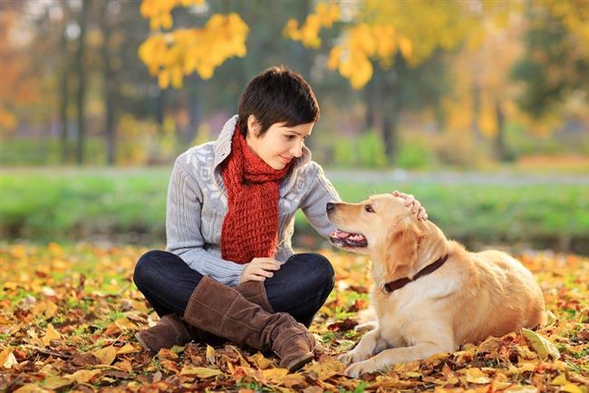 · Kural 3:  Annesiyle iletişim kurun. Anne gibi davranın. Hayvan besleyin nasıl düşünceli olduğunuzu gösterin. Annesini övün. · Kural 4:  Kıskanın bol bol .Sahip çıkın. Arkasında dolaşın.