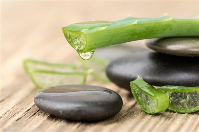 Aloe Vera:   Aloe Vera'yı jel halinde göğüslerinize sürün ve 10 dakika boyunca dairesel çizgilerle nazikçe masaj yapın. Masaj yapma işlemini bitirdikten sonra 10 dakika daha bekleyin. Daha sonra ılık suyla yıkayıp durulayabilirsiniz. Etkili sonuçlarını gözlemlemek için bu işlemi haftada 4-5 kere tekrar edebilirsiniz.  1 yemek kaşığı Aloe Vera jeli, 1 çay kaşığı mayonez ve 1 çay kaşığı bal ile karıştırın. Oluşturduğunuz maskeyi göğüslerinize sürün ve 15 dakika oturmasını bekleyin. Önce ılık sonra soğuk suyla durulayın. Bu işlemi haftada 1 kere uygulayarak sarkan göğüslerinizi tekrar eski dik haline getirebilirsiniz.