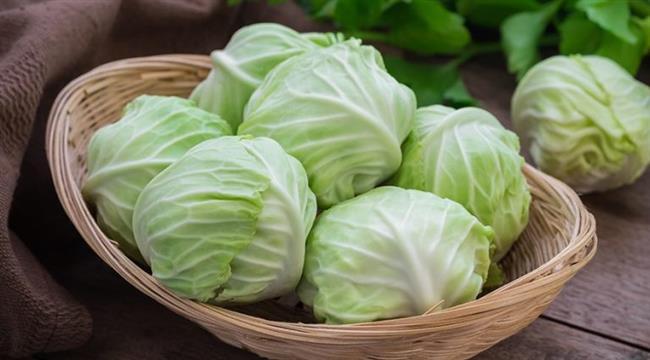 Bağışıklığı güçlendiriyor  Beyaz lahanada bulunan kükürt bağışıklık sistemini güçlendiriyor, hastalıklara karşı koruyor, iyileşme süresini hızlandırıyor. Gastrit ve ülsere karşı koruyarak, hazmı kolaylaştırıyor.   Zayıflatan 8 Tohum!