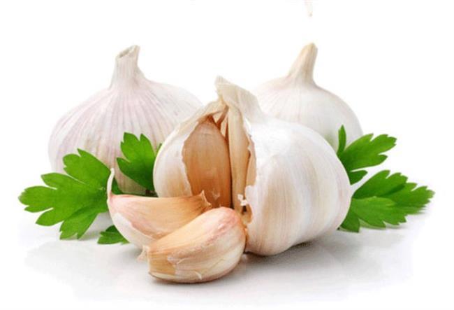 Sarımsak  Antioksidan olan sarımsak insülin seviyesini düzenleyerek tokluk hissinin daha uzun sürmesini sağlar.