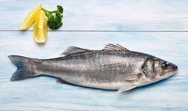 Balık  Balık; kas, kıkırdak, kan ve cildin yapı taşı olan protein bakımından oldukça zengin bir besin. Beyaz ton balığı, somon, uskumru, ringa, alabalık ve sardunya gibi yağlı balıklar kalp hastalığı riskini azaltan omega-3 yağ asitleri bakımından son derece zengin. Balıktaki omega- 3'ün vücut tarafından kullanımı diğer omega 3 içeren besinlere göre daha kolay oluyor.