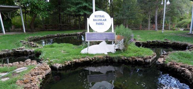 """Arguvan Kutsal Balıklar  Bir zamanlar köy muhtarı içme suyu olarak da kullanılan kaynaktaki balıkları alıp dışarı atmış. Ondan sonra muhtarın oğlu, kızı, eşi ve kendisi bir yıl içinde vefat etmiş ve ailesinden kimse kalmamış. Bu olaydan sonra balıklar tekrar türemişler. Böylece zamanla gizemine inanan köy halkı için balıklar kutsal kabul edilmiş.  <a href= http://mahmure.hurriyet.com.tr/foto/yasam/kesfedilmeyi-bekleyen-8-hayalet-kasaba_40963 style=""""color:red; font:bold 11pt arial; text-decoration:none;""""  target=""""_blank"""">Keşfedilmeyi Bekleyen 8 Hayalet Kasabayı Keşfetmek İçin Tıklayın!"""