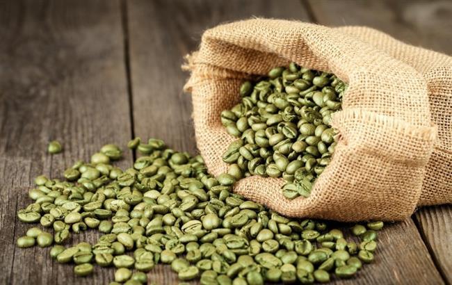 Daha şimdiden çok sayıda aktar, yeşil kahve için stoklarında yer açmaya başladı. Yeşil kahve, kökboyasıgiller (Rubiaceae) ailesinin Coffea cinsinden 5 metreye kadar büyüyebilen bir ağaç olarak tanımlanır. Normal kahve gibi kavrulma işleminden geçmez bu sebeple de faydalı etkilerini kaybetmez.