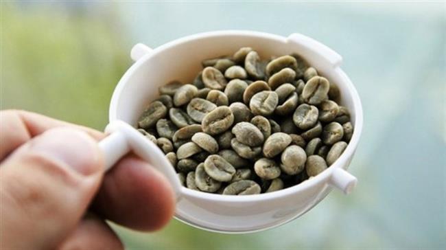 """Dr. Mehmet Öz yeşil kahve çekirdeğini tavsiye ediyor! Mehmet Öz: """"En problemli bölgeler için yeşil kahve çekirdeği!""""  """"Diğer kahveler gibi kavrulmayan yeşil kahve çekirdeği kilo vermeye yardımcı olarak klorojenik asit içerir."""" Mehmet Öz yeşil kahve için Amerika'daki televizyon programlarında bu kahve çekirdeklerinin kilo kaybında ve yağ yakımında oldukça etkili olduğunu belirtti. Metabolizmayı hızlandırıp vücudun kalori harcama oranını arttıran yeşil kahve çekirdeğinin kilo vermek isteyen kişilere diyet ve sporun yanında oldukça faydalı olacağını belirtti."""