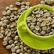 Yeşil Kahve Zayıflatıyor! - 5