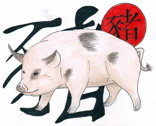 DOMUZ  Doğum yılı: 1923, 1935, 1947, 1959, 1971, 1983, 1995, 2007, 2019, 2031, 2043, 2055  Özellikleri: Samimi, tembel  En iyi anlaştığı Çin burçları: Keçi, Tavşan  Uzak durması gereken Çin burçları:Yılan, Maymun, Domuz