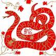 Doğum Yılınıza Göre Çin Burcunuz Hangisi? - 6