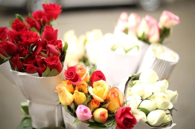 Yay Burcu Anneler   En çok çiçek seven anneler yay burcu annelerdir. Onlara çiçek veya bir bitki alın. Onlar adına Tema Vakfına bağışta yapabilirsiniz.