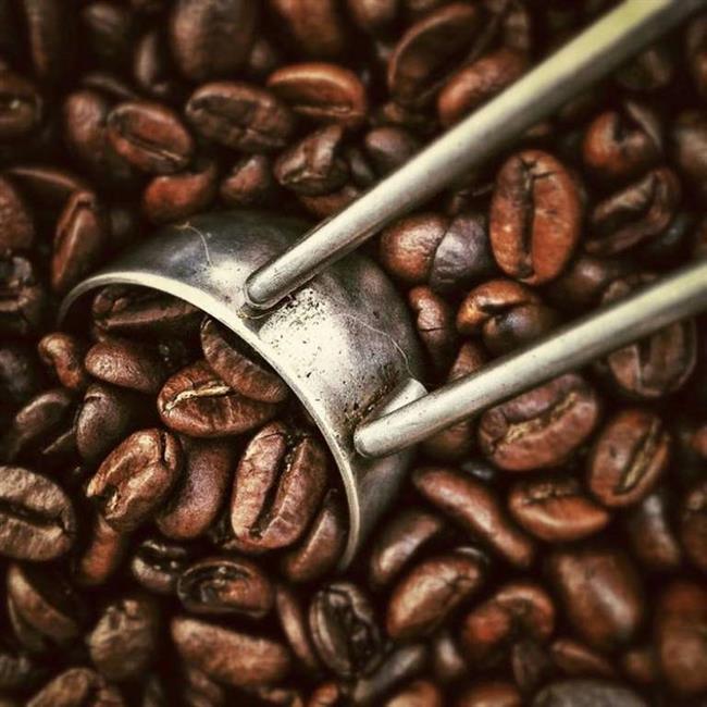 Kahve, bitkileri güçlendirmek için gübre olarak da kullanılabilir. Kahve ile yapılan gübre, özellikle asitli toprak isteyen bitkilerde kullanılabilir. Çünkü kahve, bakır, potasyum, magnezyum ve fosfor gibi elementleri içerir ve bunlar, asitli toprakta yetişen bitkilere gerekli maddelerdir. Çekilmiş kahve ayrıca havuç ve turp tohumlarına eklendiğinde, bu tohumların hızlı ve kolay büyümelerini sağlar.
