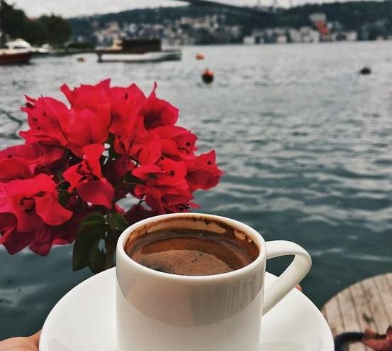 Peki kahve telvesinin bilmediğimiz faydaları neler? İşte işinize yarayacak o bilgiler....