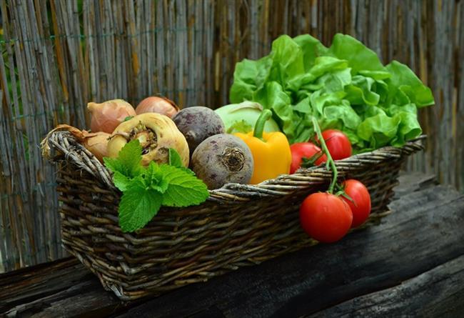 Çok Sebze Tüketin    Bu genel anlamda sağlığımız için oldukça iyidir.Patlıcan,salatalık,fasulye ve kereviz gibi sebzeler vücudu nikotinden temizler.Kan hücrelerinizin maksimum seviyede çalışması için oksijene ihtiyaç vardır.Bunun için sık sık derin nefes alın.
