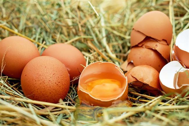 Peki, yumurtaların dışını yıkamak gerekli mi? Birçok tüketici aldığı yumurtayı buzdolabına koymadan önce yıkıyor.