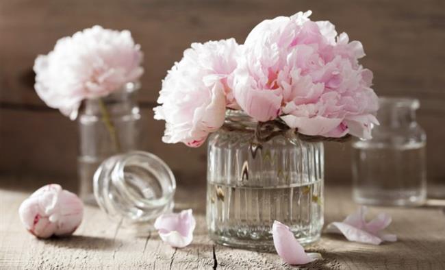 Çiçeklerinizi yaşatır  Vazoya koyduğunuz kesme çicekler hızla solar. Ancak çiceklerinizi koyacağınız vazonun suyuna bir çay kaşığı kabartma tozu koyun. Çicekleriniz çok daha uzun taze kalacaktır.