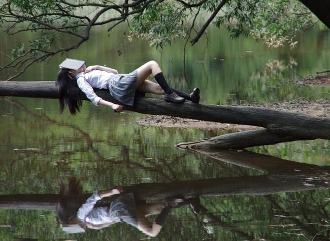Sırtlarında uyuyan tek canlılar insanlardır.  Ortalama bir insanın uykuya dalması için yedi dakikaya ihtiyacı vardır.