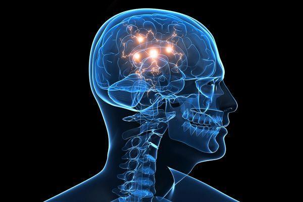 İnsan beyni sabit disk sürücüsündeki dört terabayta eşdeğer bellek kapasitesine sahiptir.  İnsan beyninde her saniye 100.000 kimyasal reaksiyon oluşur.