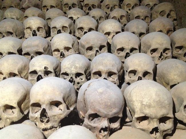 Kafatası 29 farklı kemikten oluşur. Kemikler çelikten yaklaşık 5 kat daha güçlüdür.