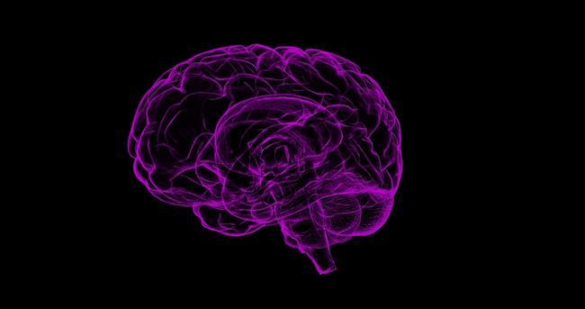 Tek bir insan beyni, dünyanın bütün telefonlarının bir araya geldiğinden daha fazla elektrik uyarısı üretir.  İnsan vücudundaki sinir uyarıları yaklaşık 90 m / s'de hareket eder.
