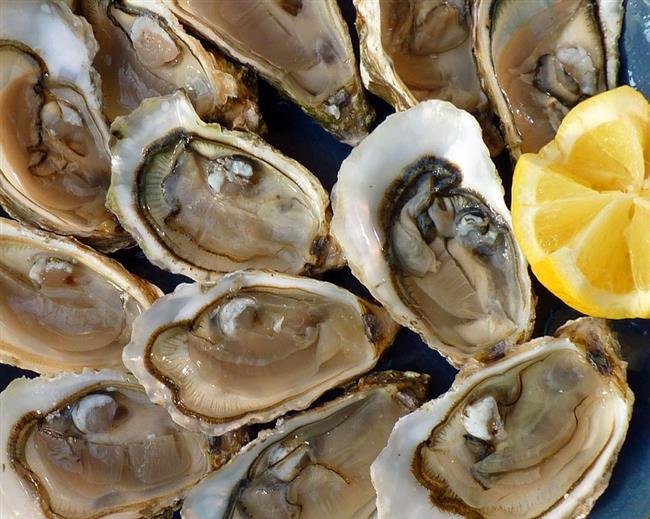 İstiridye  Eski Romalılar tahrik edici etkisi olması nedeniyle kendilerini istiridyeye kaptırmış durumdaydı. Bu konuda da kesinlikle doğru bir noktadaydılar. İstiridyenin içinde yüksek oranda çinko (testosteron üretimi için gerekli bir mineral) vardır. Amerikan ve İtalyan bilim adamlarından oluşan bir ekip, midye, deniz tarağı ve istiridyede cinsel hormonları yükselten iki çeşit amino asit bulunduğunu görmüşler.