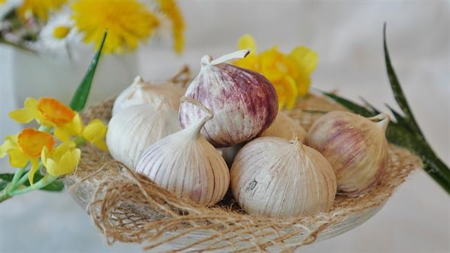 5. Kalp Hastalık Riskini Düşürür  Sarımsak, toplam LDL kolesterolü düşürerek kalp rahatsızlığı riskini azaltmaya yardımcı olabilir. Annals of Internal Medicine dergisinde yayınlanan, 2000 yılındaki bir çalışma, sarımsağın yüksek seviyelerde orta düzeyde azaltılan kolesterol düzeyleri olan kişilerde toplam kolesterol düzeyine etkisi olduğunu bulmuştur.