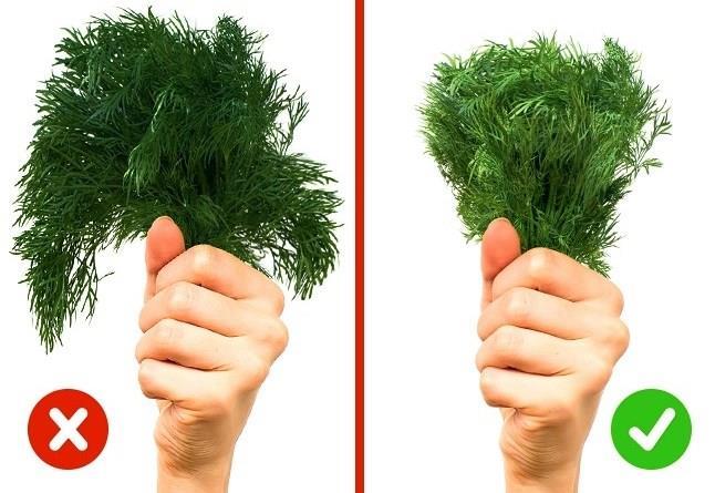 YEŞİLLİKLER  Mesela bir dereotu tutun.Yapraklar kenarlar üzerinde asılıyorsa, zaten solgunlaşmış olur.Artı, renk çok koyu ise ve saplar çok uzunsa, nitrat içerdiği anlamına gelir.Taze otlar her zaman doğal yeşil renktedir.