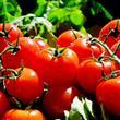 Cilt Yaşlanmasını Önleyebilen Gıdalar - 11