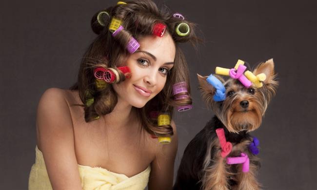 Saç tokaları ve bigudiler:   Saç derisiyle temas eden toka, bigudi hatta tarak mantar ve bit içerebilir. Paylaşımı bu nedenle tehlikelidir.