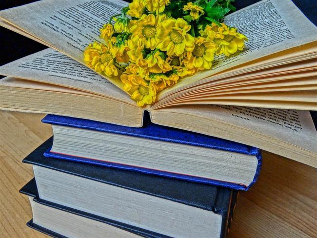 Her Kadının Kitaplığında Olması Gereken Kitaplar - 1
