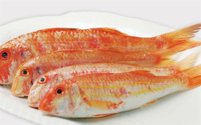 Hangi Balık Hangi Ay Yenmeli? - 14