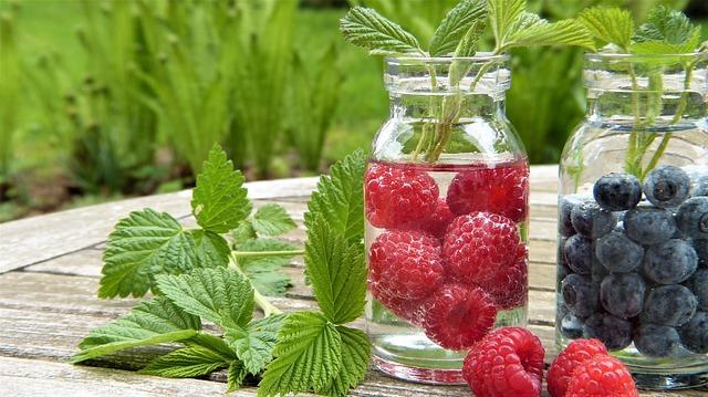Günlük su tüketimi böbreklerden toksin atmak için önemlidir. Sebze meyve koyup hazırlanan sular daha aromatik olacağı için su içemeyenlerin daha rahat içmelerini sağlayabilir.