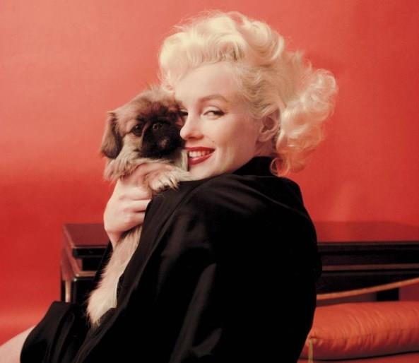 Marilyn Monroe - Hristiyan Bilim  Hristiyanlığın en eski inanışlarından biri olan Bilim ve Sağlık cemaati insanların ameliyatlar ve ilaçlar olmadan iman gücüyle iyileşebileceğine inanan bir sistem. Onlara göre her türlü derdin devası maneviyat ve duadır. Günümüzde 100 bin kadar takipçisi bulunan bu inancın en ünlülerinden biri ise Marilyn Monroe'dur.