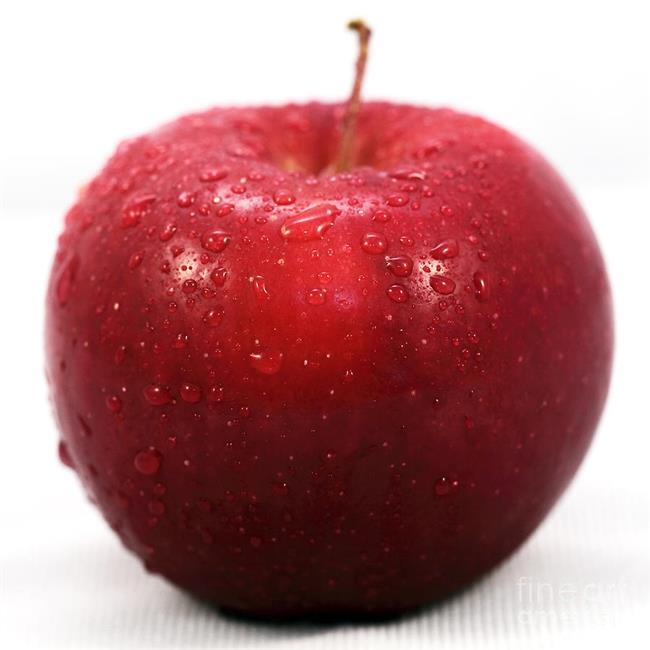 """Elma  Sağlıklı bir diyet yapmak istiyorsanız elmayı hep yakınınızda tutun. Doyurucu özelliğinin yanında kan şekerini de düzenlediği için açlık hissini dengeler. Ayrıca sabah yendiğinde uyarıcı etkisi sayesinde güne daha konsantre başlayabilirsiniz.  <a href=  http://mahmure.hurriyet.com.tr/foto/saglik/7-maddede-saglik-efsaneleri_42614/  style=""""color:red; font:bold 11pt arial; text-decoration:none;""""  target=""""_blank"""">  7 Maddede Sağlık Efsaneleri"""