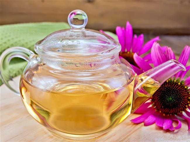 Kışı hasta olmadan geçirmek için ekinezya çayı tüketin  Ekinezya, özellikle üst solunum yolu hastalıklarından kurtulmak için fayda sağlayan önemli besinlerden biridir. Bağışıklığı kuvvetlendiren ekinezya ayrıca virüslerin yol açtığı iltihap etkenlerinin miktarını kontrol ederek boğazdaki iltihabın azalmasına da yardımcı olabilmektedir. Herhangi bir sağlık problemi yoksa günde 2 fincana kadar tüketilebilir.