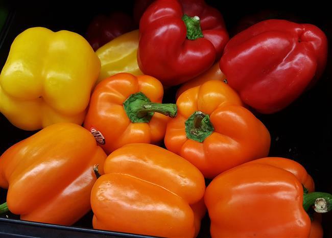 Cilt Kuruluğunun Önüne Geçen 10 Yiyecek - 8